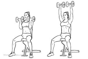 Seated_Arnold_Dumbbell_Press_F_WorkoutLabs